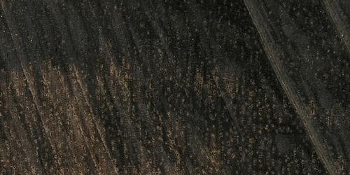immagini di ebano