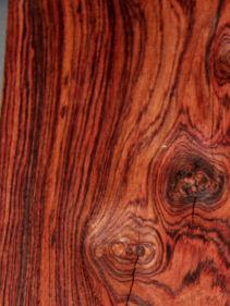kingwood del legno messico